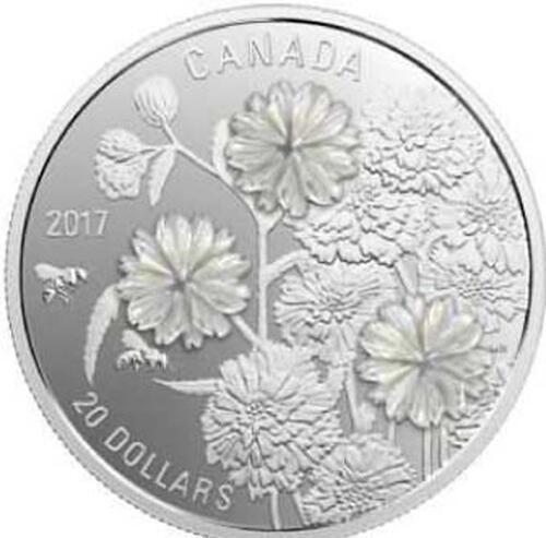 Lieferumfang :Kanada : 20 Dollar Sumpfschafgarbe - Pearl Flower - mit Perlmuttauflage  2017 PP