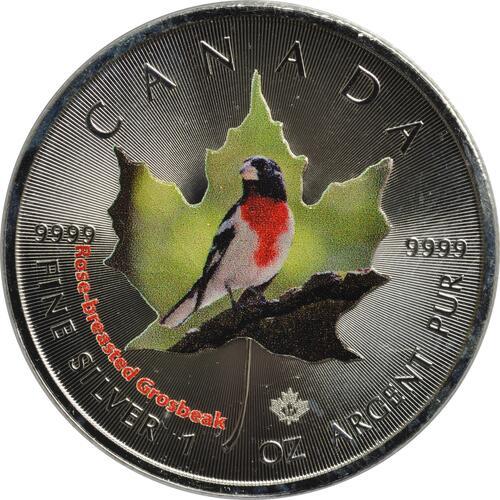 Vorderseite :Kanada : 5 Dollar Maple Leaf - Vögel - Rose-Breasted Grosbreak  2017 Stgl.