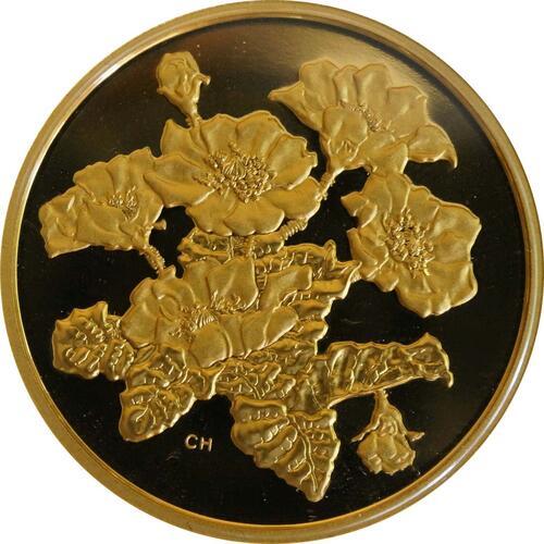 Vorderseite:Kanada : 350 Dollar Silberwurz -selten- 2011 PP