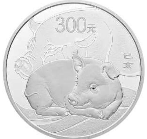 Lieferumfang:China : 300 Yuan Year of the Pig Kilo  2019 PP