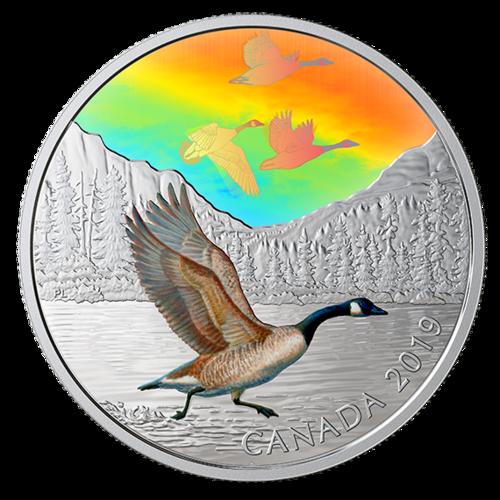 Lieferumfang:Kanada : 30 Dollar Canadagänse - Vögel in Bewegung #1  2019 bfr