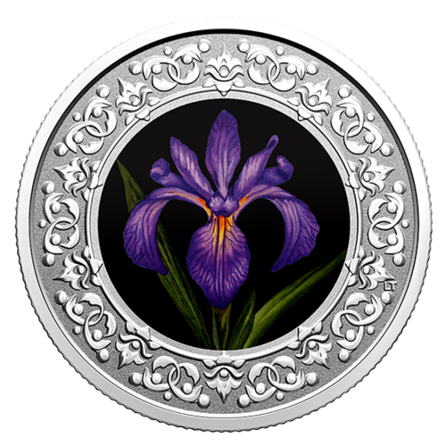 Vorderseite:Kanada : 3 Dollar Schwertlilie/Quebec - Florale Wahrzeichen #2  2020 PP