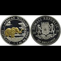 Somalia 2019 100 Schilling Elefant - teilvergoldet Stgl.