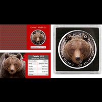 Kanada 2019 5 Dollar ML - Canada´s Wildlife Grizzly Stgl.