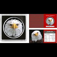Kanada 2019 5 Dollar ML - Canada´s Wildlife Adler Stgl.