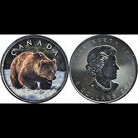 Kanada 2019 5 Dollar Maple Leaf - Trails of Wildlife Grizzly Stgl.
