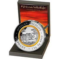 Somalia 2019 2000 Shillings Elefant - mit Polymerring PP