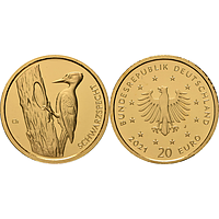20 Euro Schwarzspecht 2021 Stgl. Deutschland