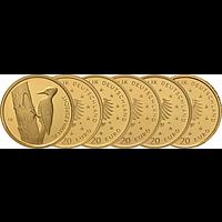 20 Euro Schwarzspecht Komplettsatz 2021 Stgl. Deutschland